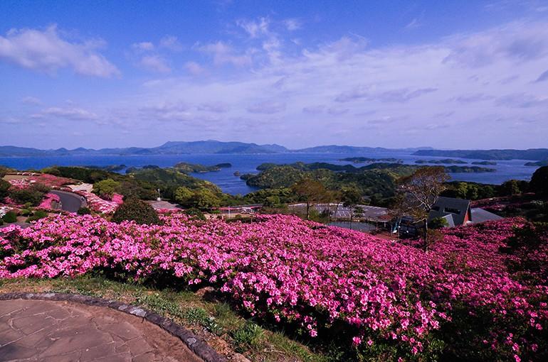 長串山つつじまつり2014、開催中!